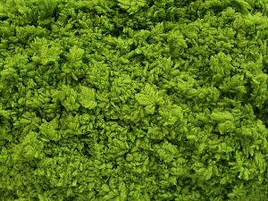 Περιεχόμενο ίνας 100% Micro Fiber, Brand Ice Yarns, Grass Green, fnt2-67517