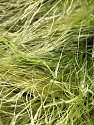 Fiber Content 100% Polyester, Brand Ice Yarns, Green Shades, Yarn Thickness 6 SuperBulky  Bulky, Roving, fnt2-51308